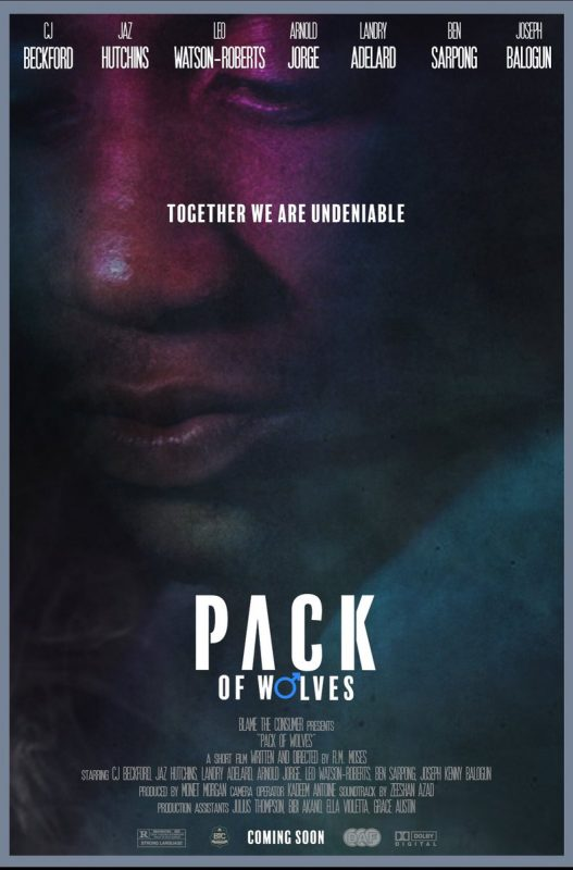 Pack of Wolves Poster - CJ Beckford